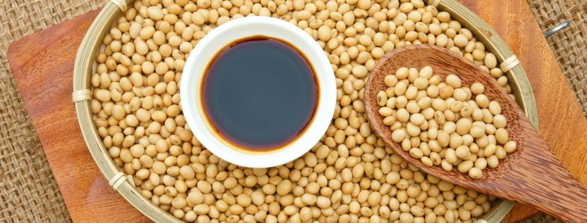 Perfect Soybean Oil - Factor Trading